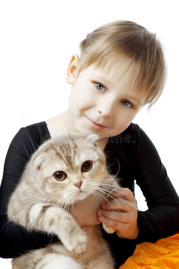 Little girl with a cat on a white background. The image of a little girl with a cat on a white background stock photography