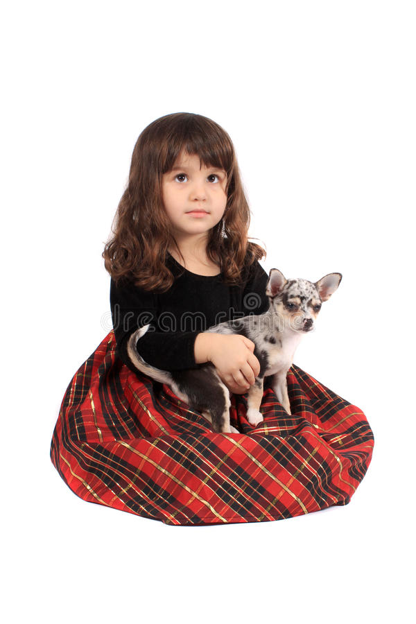 Little girl and chihuahua stock photography