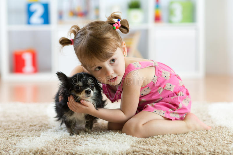 Little girl with Chihuahua dog in children room. Kids pet friendship. Little girl with Chihuahua dog in children room. Kids and pets friendship royalty free stock photos