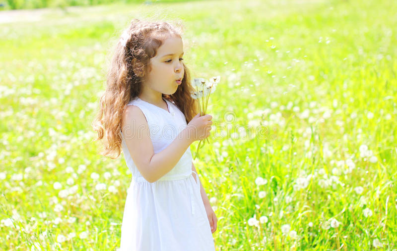 Little girl child blowing dandelions flowers in spring field stock photography