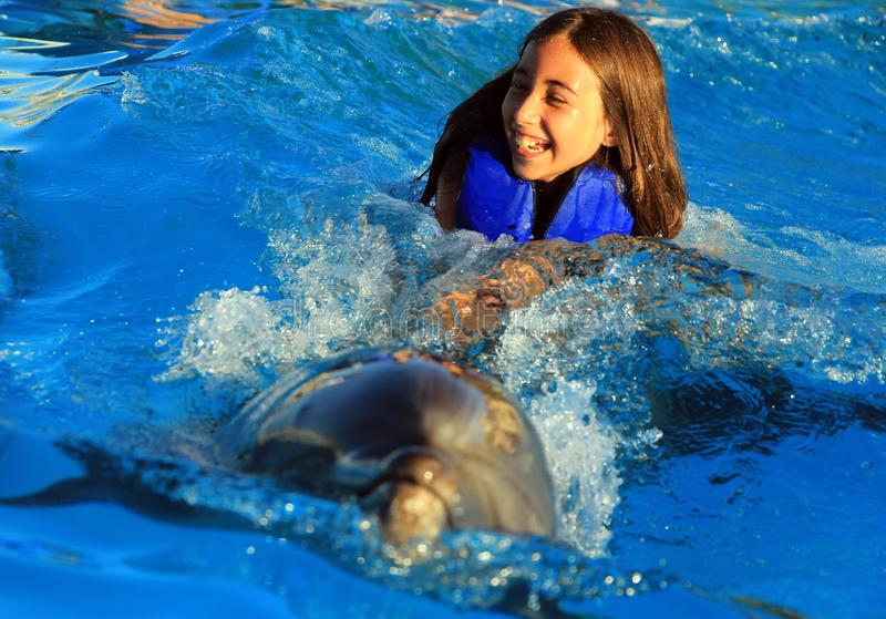 Little girl children swimming with a gorgeous dolphin flipper smiling face happy kid swim bottle nose dolphins. At aquarium high quality picture stock image
