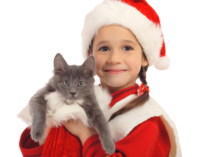 Little girl in Christmas hat with gray kitty. Isolated on white stock photo
