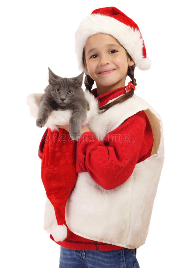 Little girl in Christmas hat with gray kitty. Isolated on white royalty free stock photo