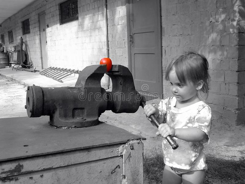 Little girl clamped in a vise tomato. royalty free stock photo