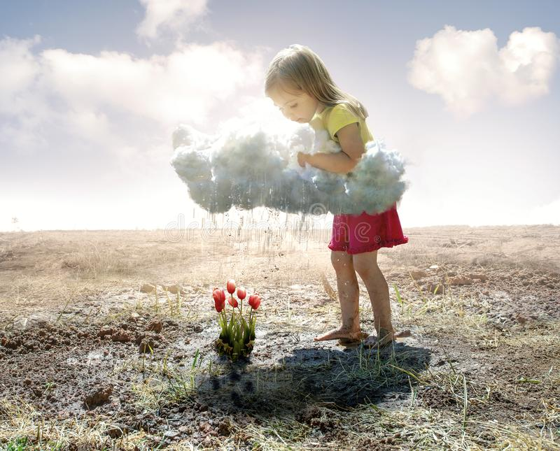 Little girl and cloud. A little girl grabs a cloud and pours rain on some pink tulips royalty free stock photography