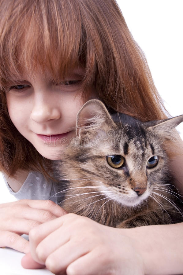 Little girl communicating with her pet. Kitten royalty free stock photography