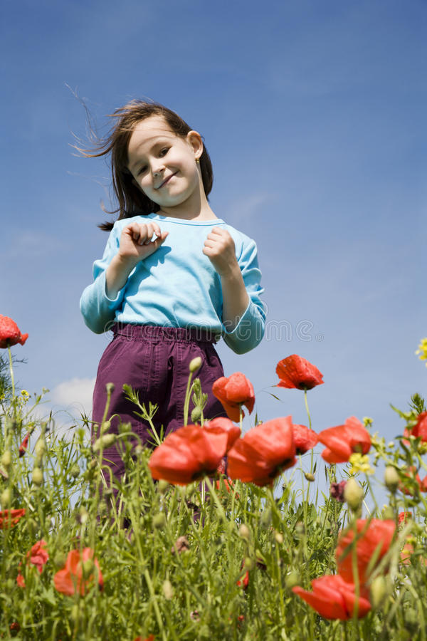 Download Little Girl In The Corn Poppy Stock Image - Image: 14861553