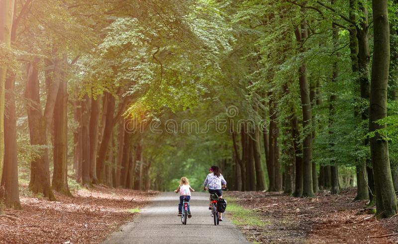 Little girl cycling with her mother. In Holland stock photo
