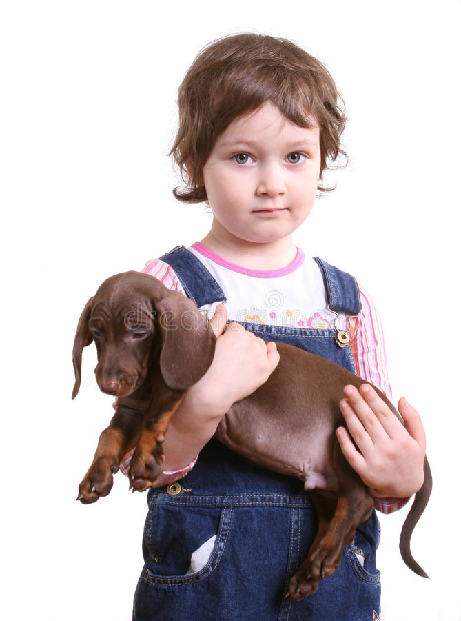 Little girl with dachshund puppy stock images