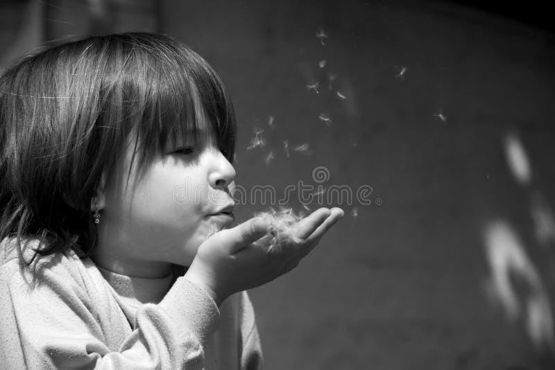 Little girl and dandelion stock image