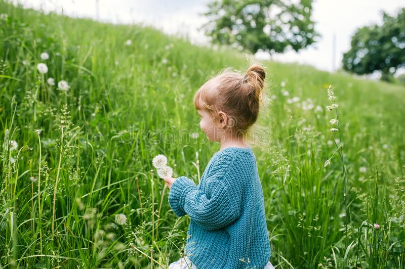 Little girl with dandelion on green grass background royalty free stock photo