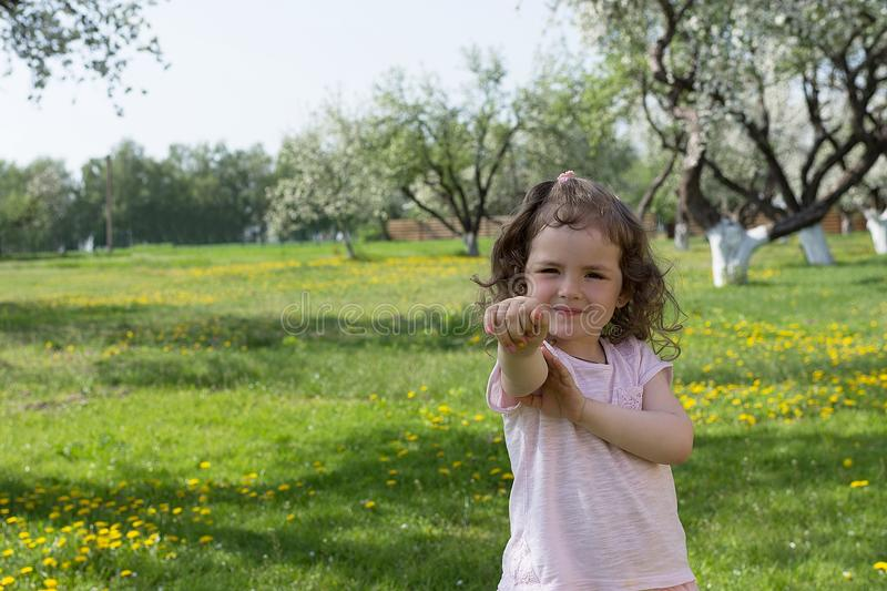 Little girl on dandelion lawn background.  stock photography