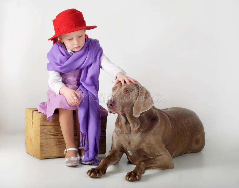 Download Little girl and dog stock photo. Image of caucasian, indoors - 23963820