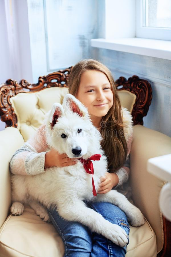 little girl with a dog. The concept of friendship stock photo