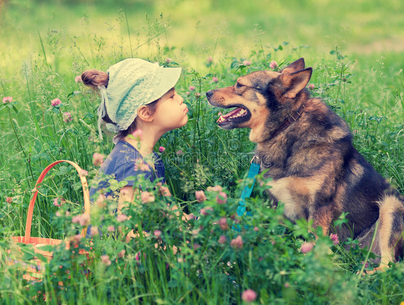 Little girl with dog royalty free stock image