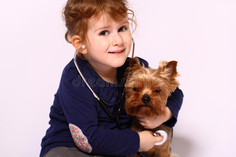 Little girl with a dog stock photo