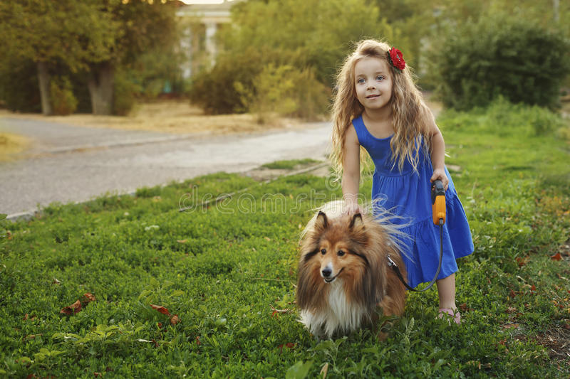 Little girl with a dog Sheltie stock photography