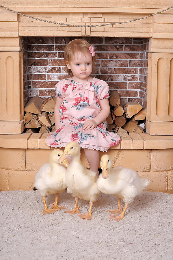 Little girl with ducklings stock image