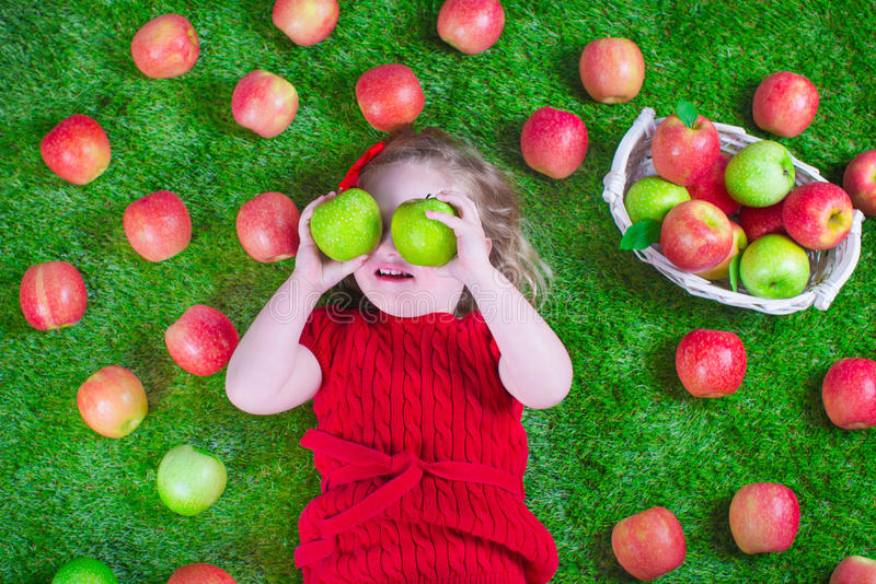 Little girl eating apples. Child eating apple. Little girl playing peek a boo holding fresh ripe apples. Kids eating snack relaxing on a lawn. Children summer royalty free stock image