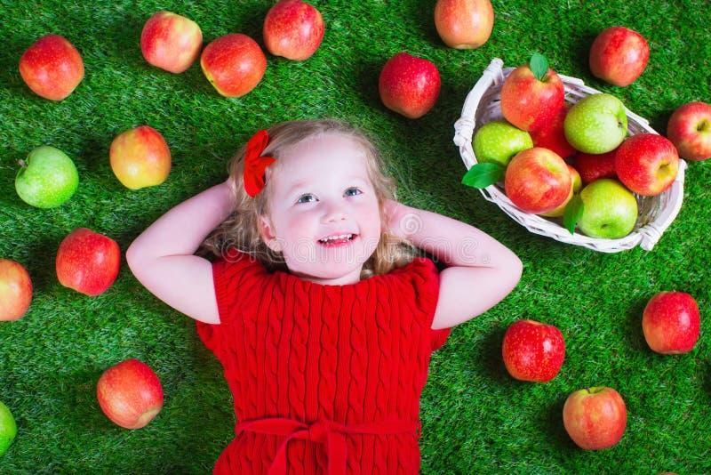 Little girl eating apples. Child eating apple. Little girl playing peek a boo holding fresh ripe apples. Kids eating snack relaxing on a lawn. Children summer stock image