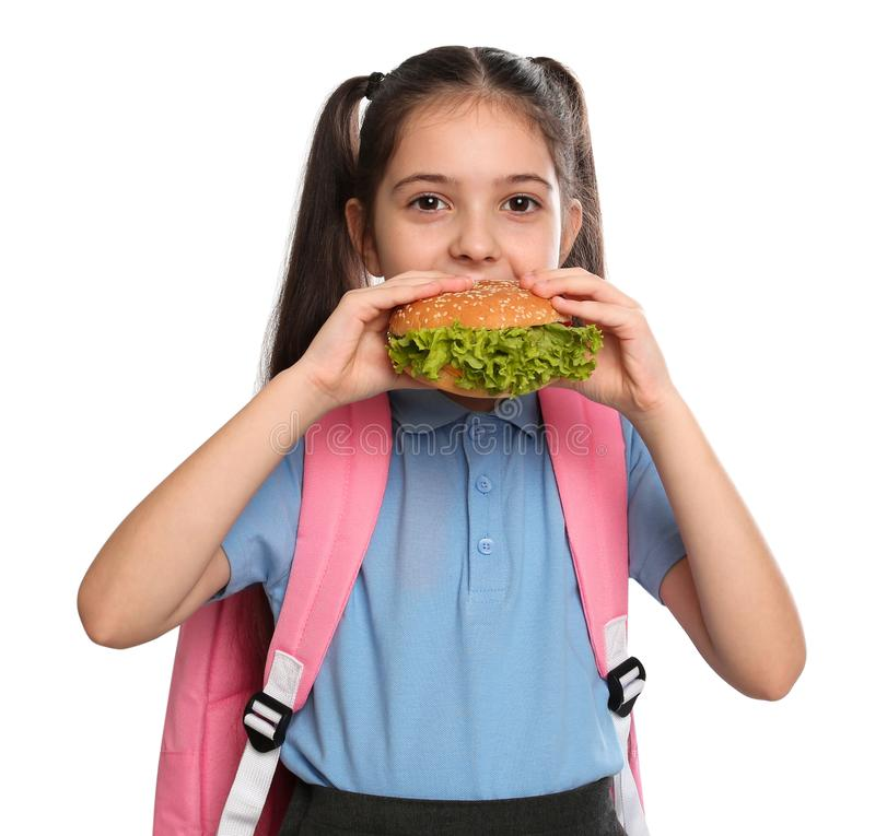 Little girl eating burger on white background.  food for school lunch stock image