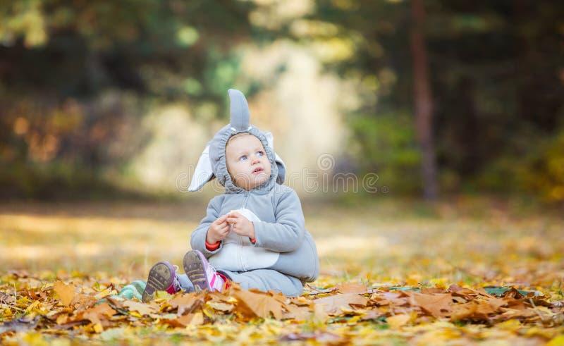 Little girl in elephant costume stock images