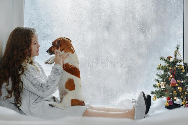 Little girl embracing her puppy dog, sitting on window and waiting Christmas. stock photography