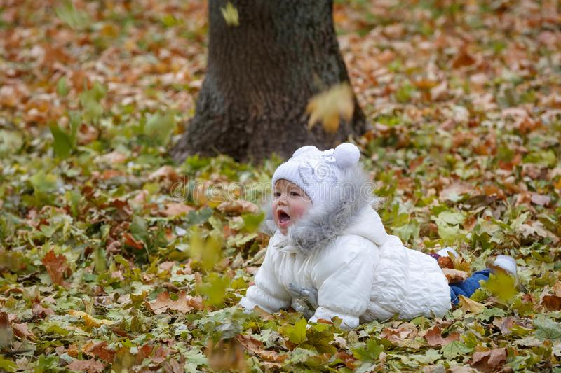 Little girl, with emotional expression of her face, lies on dry orange fallen leaves in autumn parkland royalty free stock photos