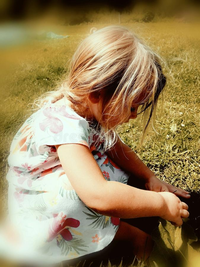 Little girl exploring the grass royalty free stock image