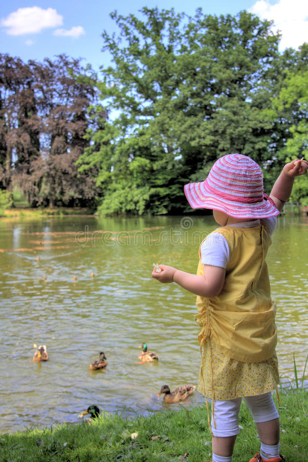 Download Little Girl Feeding Ducks Royalty Free Stock Photo - Image: 10211115
