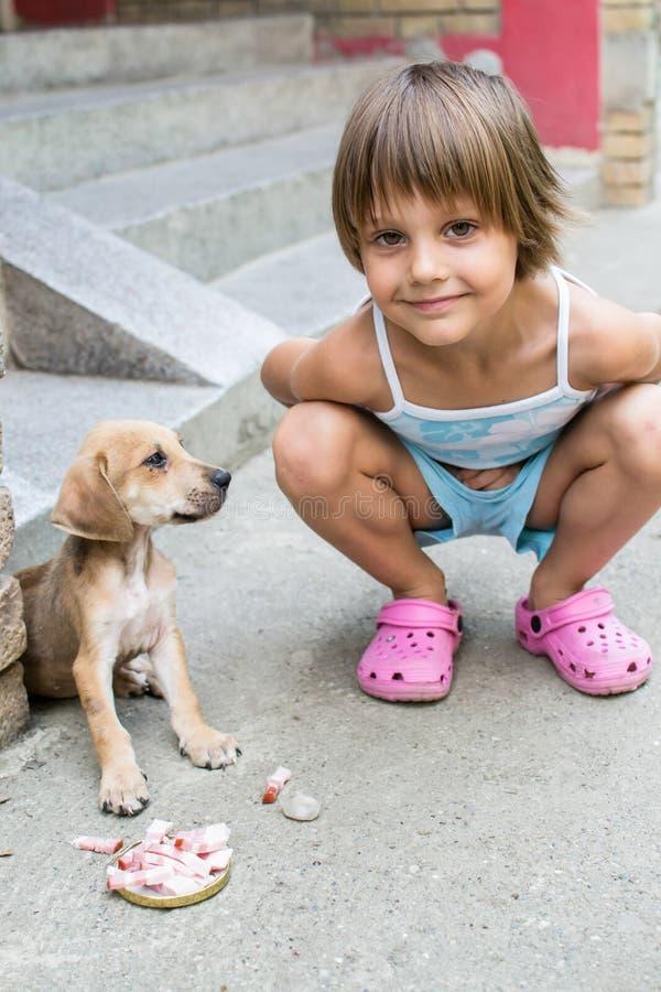 Little girl feeding a puppy royalty free stock photos