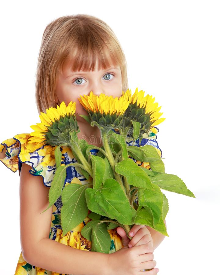 Little girl with flowers of sunflower. royalty free stock photos