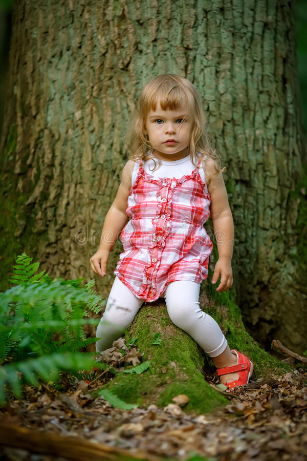 Download Little girl in the forest stock photo. Image of beautiful - 26055446