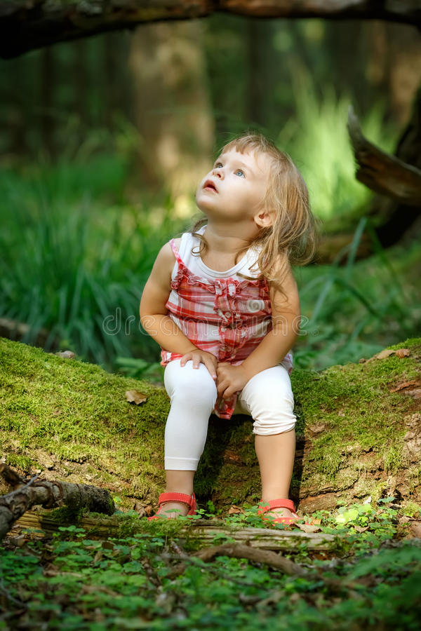 Download Little girl in the forest stock image. Image of looking - 26070011