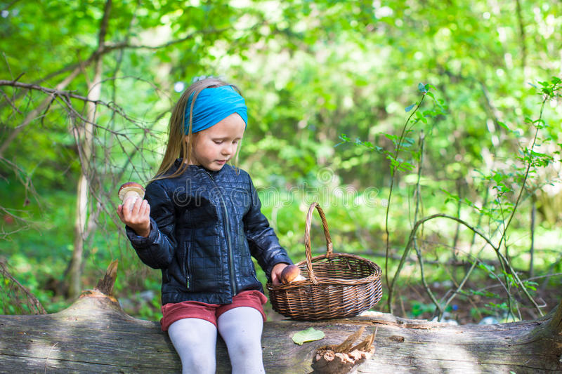 Little girl gathering mushrooms in autumn forest. Little cute girl gathering mushrooms in an autumn forest stock image