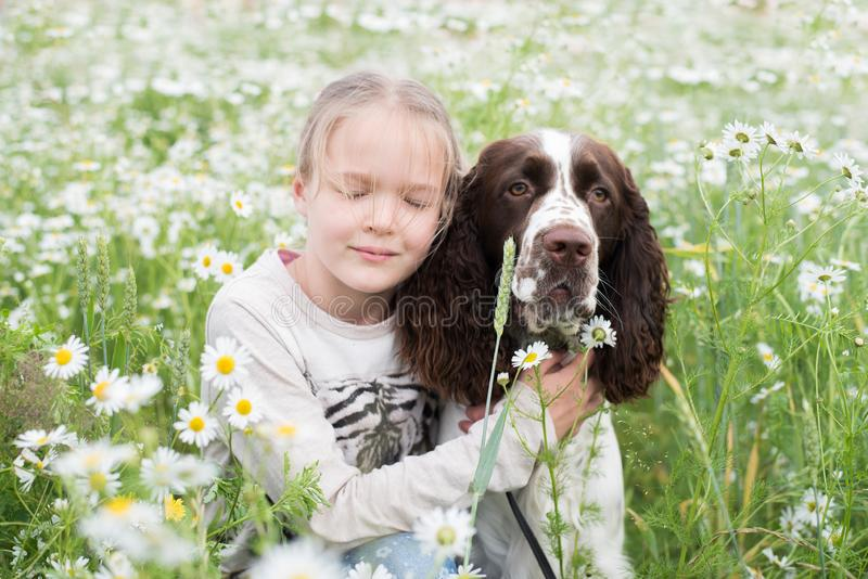 Little girl gently hugs his dog in daisy field. Friendship child girl and dog. Concept: love of animals stock photos