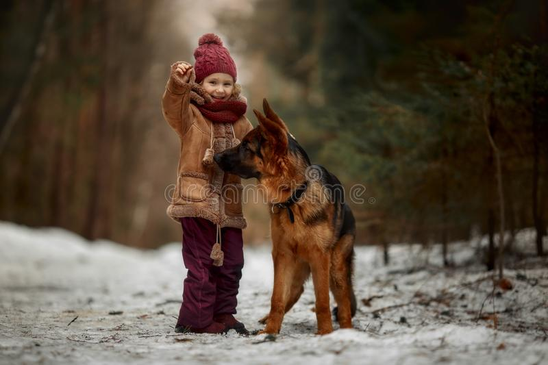 Little girl with German shepherd 6-th months puppy at early spring royalty free stock photography