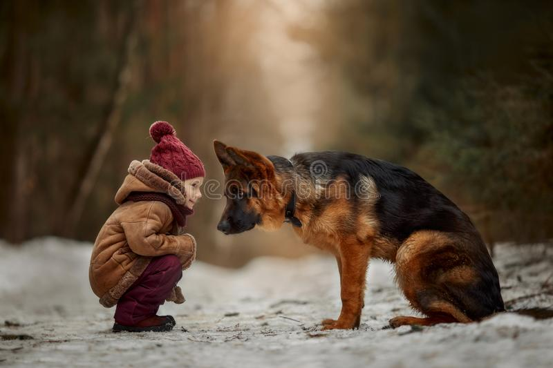 Little girl with German shepherd 6-th months puppy at early spring royalty free stock image