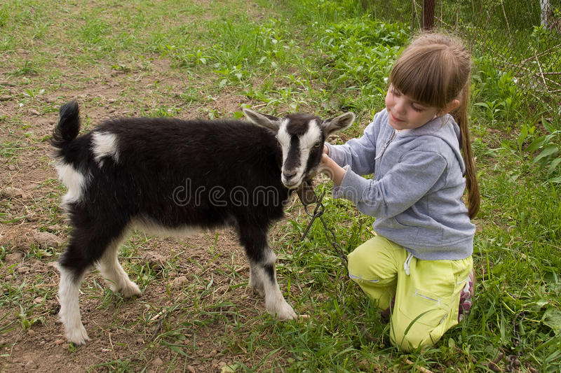 Little Girl With Goat Royalty Free Stock Images