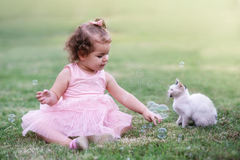 Little girl on the green grass playing with cat in park royalty free stock images