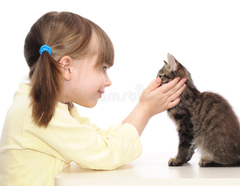 Little girl and grey kitten royalty free stock photography
