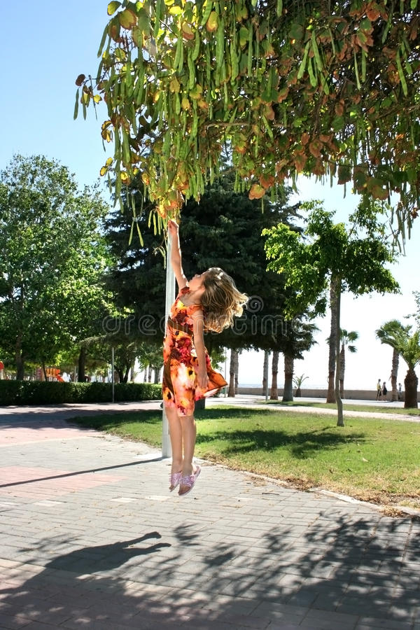 Little girl hanging by branch. royalty free stock photo