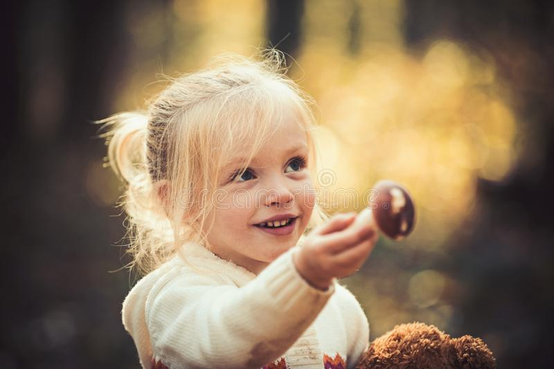 Little girl harvest mushrooms in woods. Child with fresh mushroom in autumn forest. Organic and healthy food. Upbringing royalty free stock images