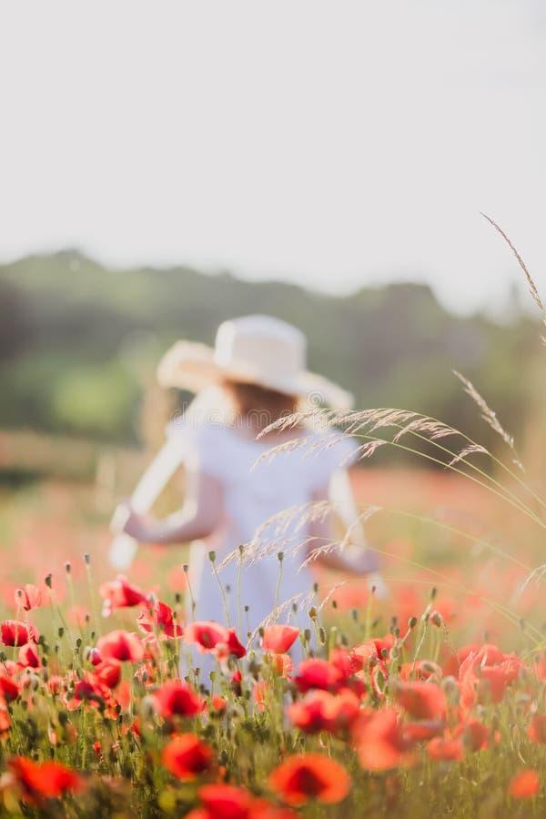 Little girl in a hat walks through a poppy field stock photo