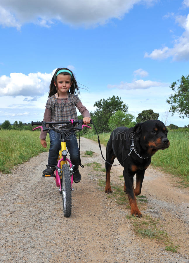 Download Little girl and her dog stock photo. Image of exercise - 9512790