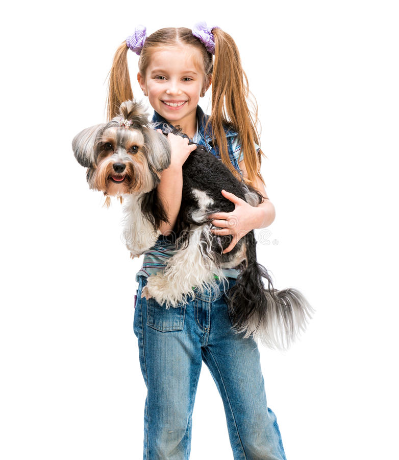 Little girl is with her dog Yorkshire Terrier. Smiling little girl stand with her dog Yorkshire Terrier isolated on white backdround royalty free stock photography