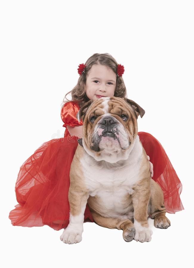 Little girl with her English bulldog. English bulldog with little girl posing,isolated on white background royalty free stock photography