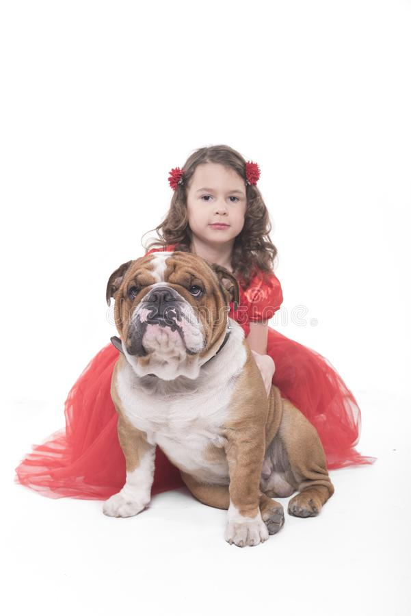 Little girl with her English bulldog royalty free stock photo