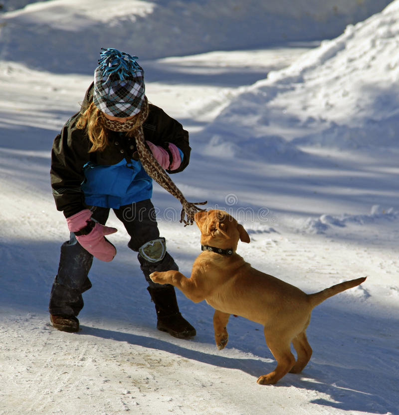 Download Little girl with her puppy stock image. Image of snow - 19003933