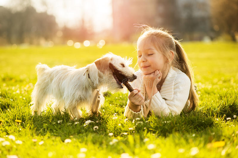 Little girl with her puppy dog royalty free stock image